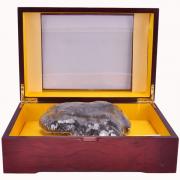 长白山灵芝 灵芝礼盒