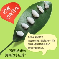 内蒙古特产燕麦胚芽米
